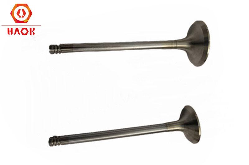 Exhaust valve 04280049